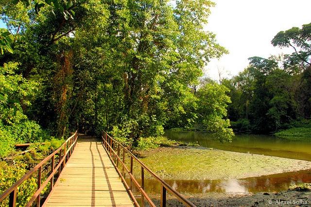 imagem do site belezadacaatinga.blogspot.com