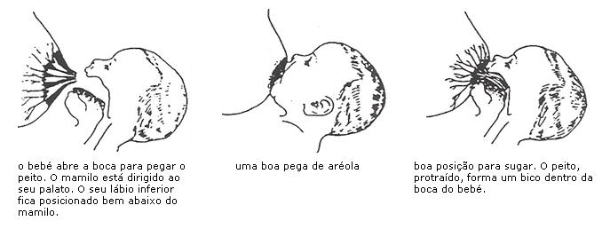 pega002