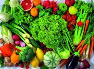 Milc na escola – Alimentação, confusão nutricional, falta de tempo e informação